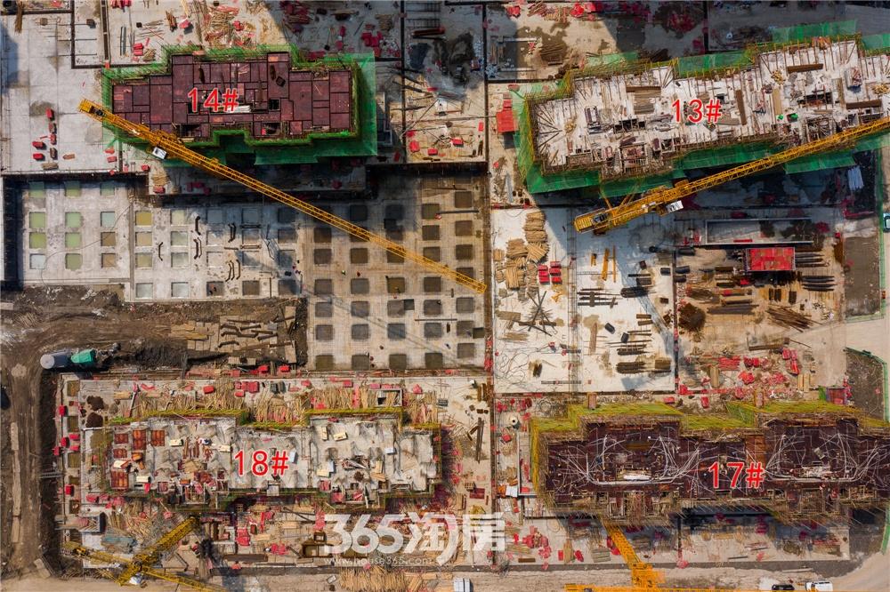 信德悦城实景图