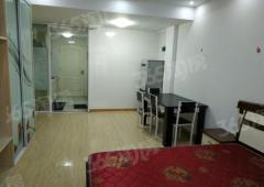 金马郦城西区1室1厅1卫50.32平方米340万元