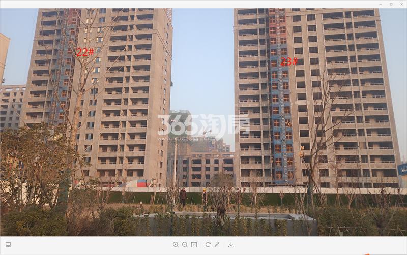 红星云龙金茂悦23、22#工地实景图(12月20日)