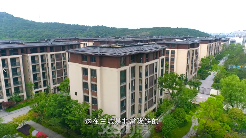 主城低密新中式豪宅--绿城云栖玫瑰园