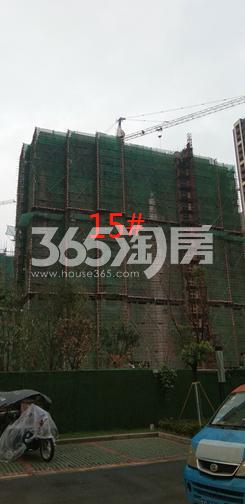 城置万锦城项目工地15#楼实景图