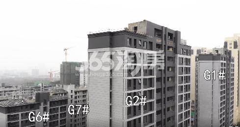 北雁湖玥园楼栋施工进度实景图(2021.1.8)