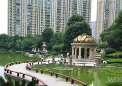 仙林东万达茂恒大雅苑旁品质小区彩虹城精装两房户型