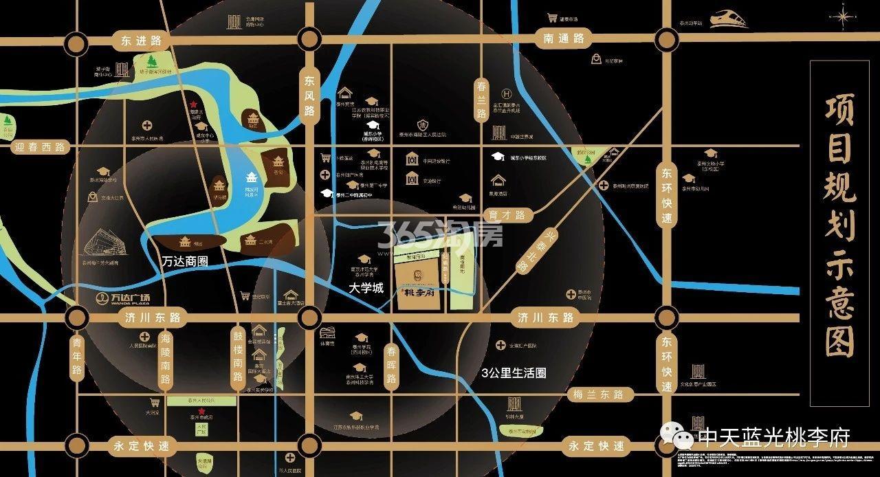 中天·蓝光·桃李府交通图