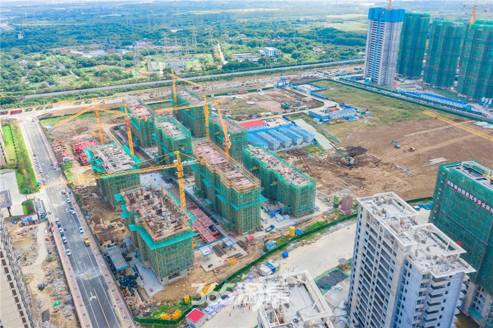 伟星天境工程进度实拍图:17#楼七层墙柱八层结构施工中(2020.9月摄)