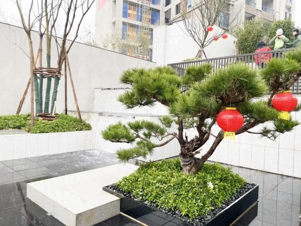 贵阳碧桂园大学印象圆满完成工地开放暨总经理见面会-中国网地产