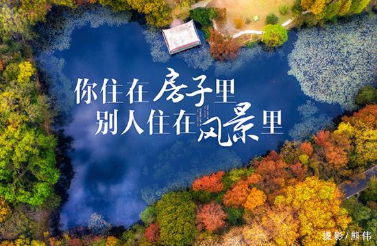你住在房子里 别人住在风景里!南京最美秋景在哪里?