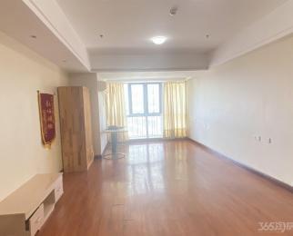 正南 1室1厅 天鹅湖万达广场 精装修