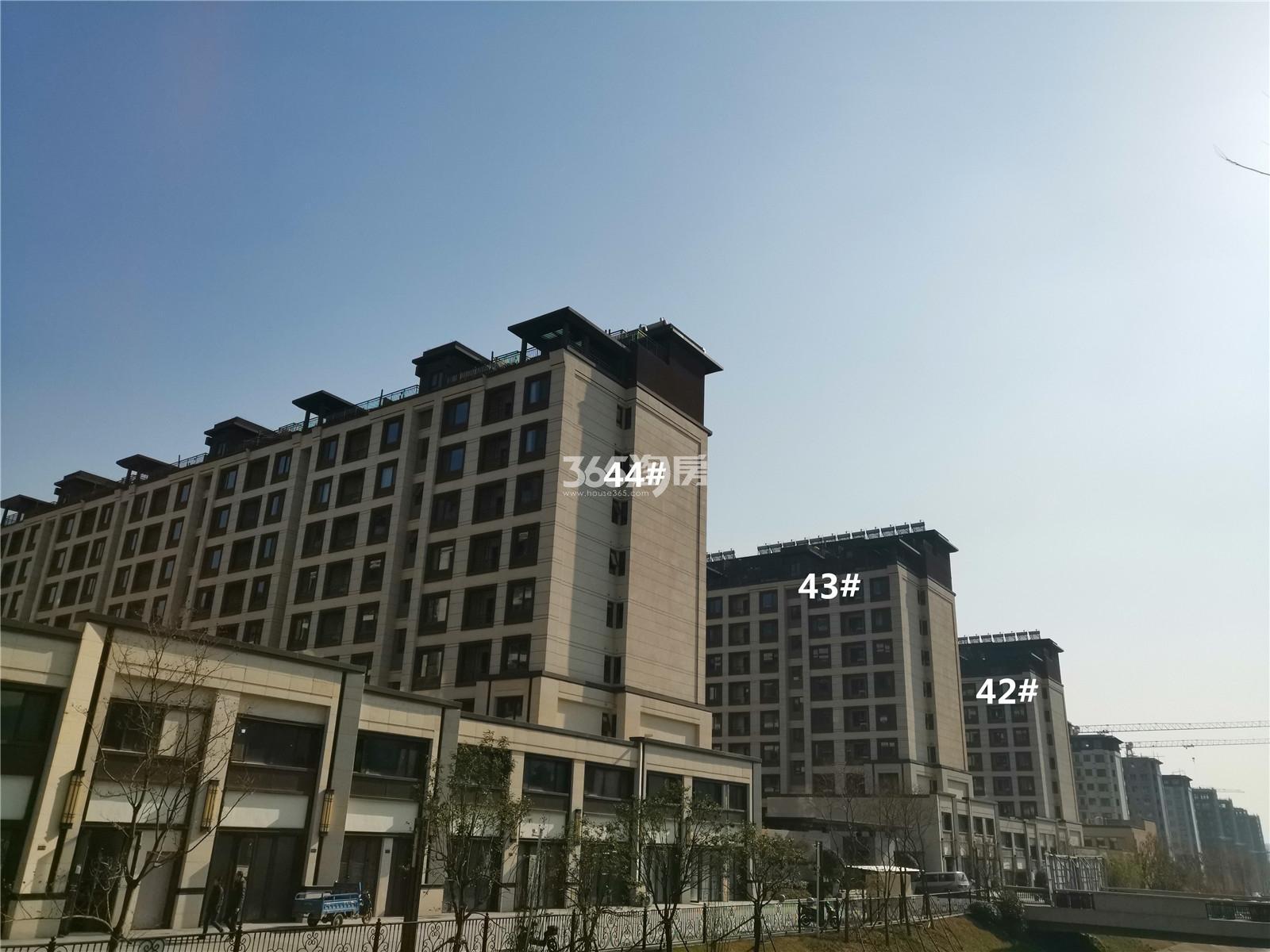 金隅紫京叠院44、43、42号楼实景图(1.28)