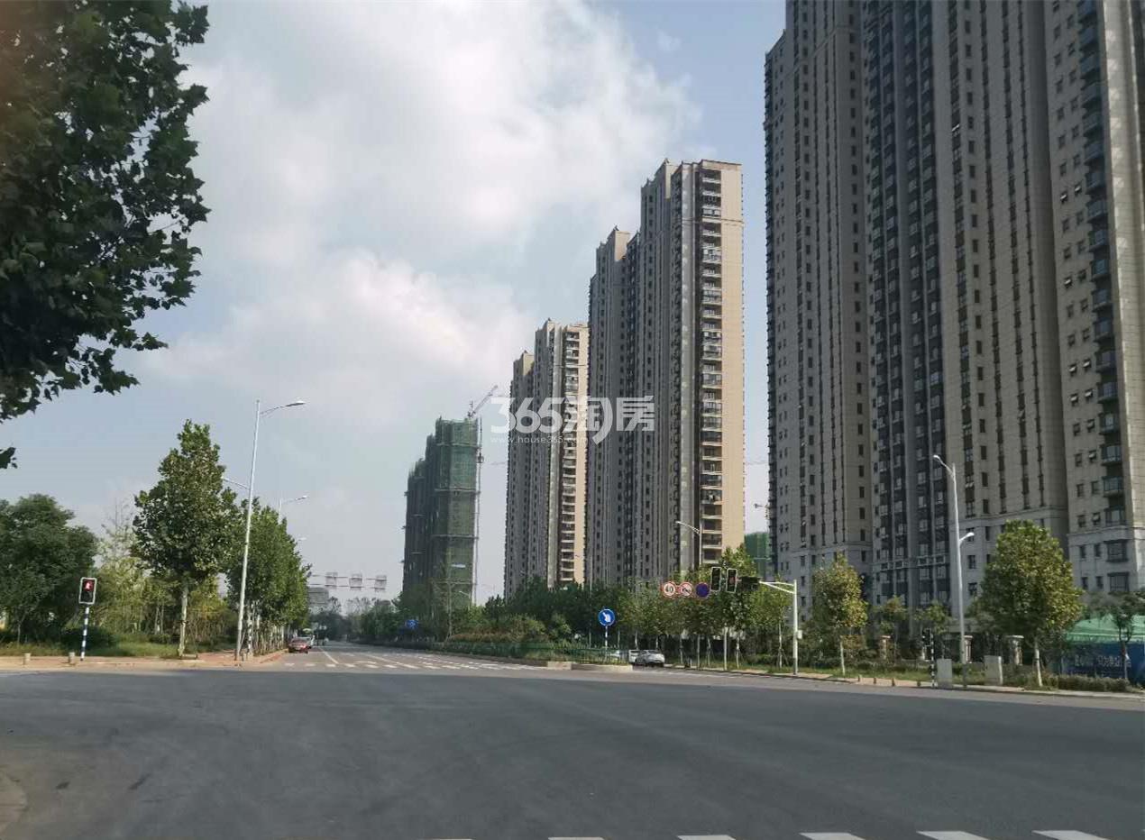 滨江雅园交通图