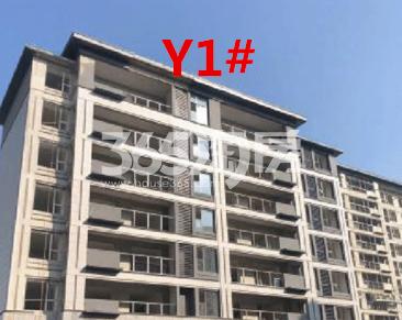 北雁湖玥园Y1楼栋外立面实景图(2020.12.9)