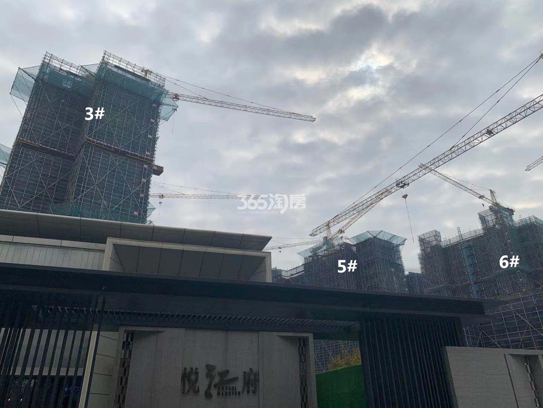 悦江府3、5、6号楼实景图(11.27)
