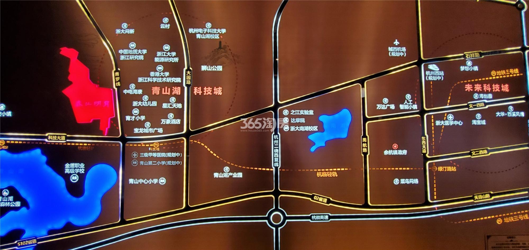 大华春山椿树实景图