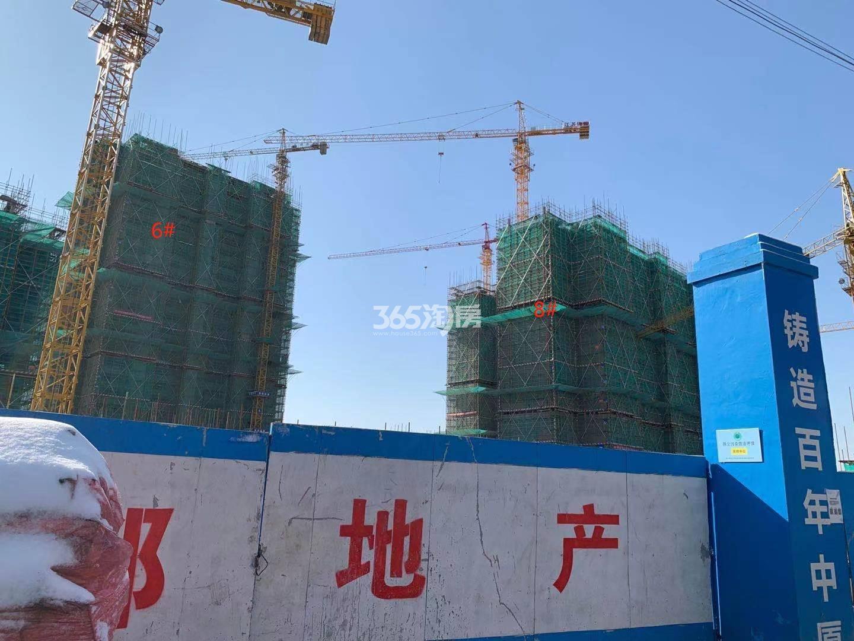 西江瑞府8、6号楼实景图(12.30)