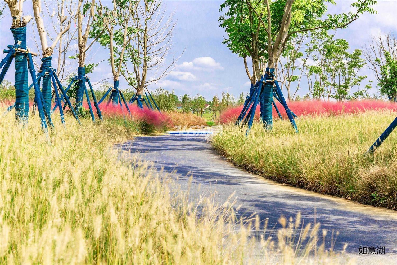 蓝天慧融花园周边公园(12.31)