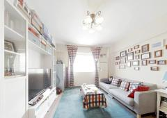 托乐嘉单身公寓 一室一厅 婚房精装保养好 拎包入住 业主急售