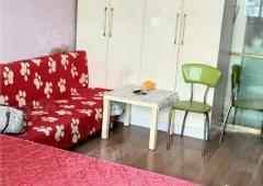 托乐嘉单身公寓1室0厅1卫35平方米93万元