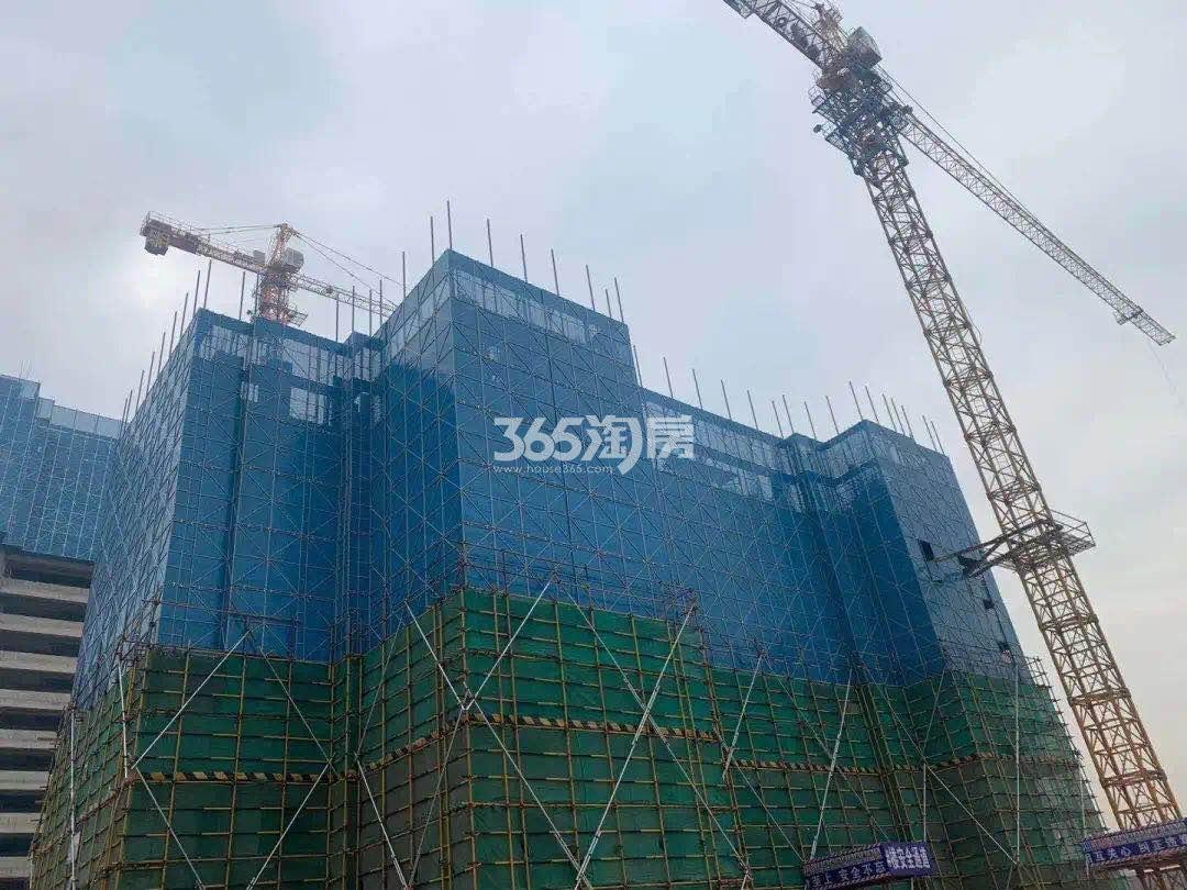 紫樾府A地块7#施工进展(1.15)