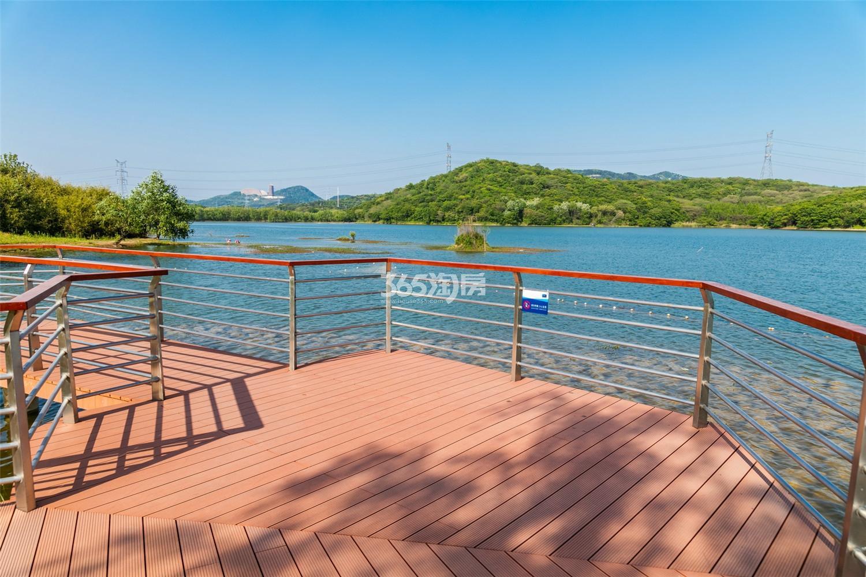 瑞安翠湖山景观实景图(9.27)
